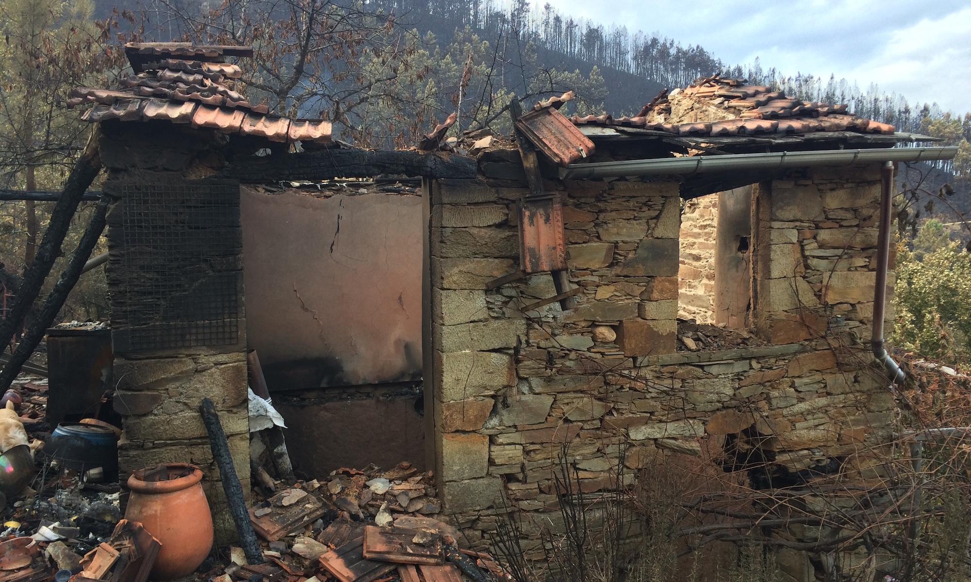 Base de dados de necessidades comunitárias pós-incêndios • Post-Fire Community Needs Database